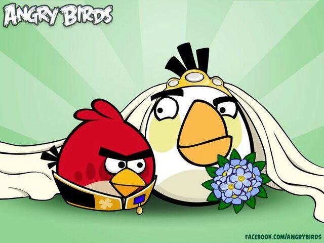 File:White bird iz girl.jpg