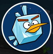 IceBirdSpace