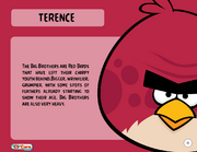 Terence Toy Care