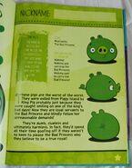 Annual Book Pig 2