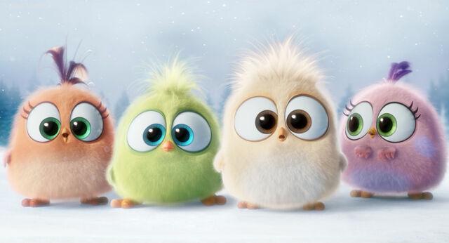 File:Hatchlings AB Movie.jpg