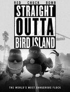 Straight Outta Birds Island