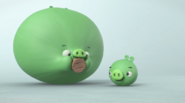 Piggy Tales-Puffed Up (1)