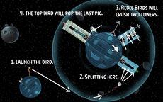 SW 2-1 strategy