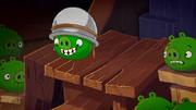 Pig Talent Corporal Pig 1