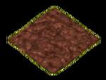 Field (Transparent)