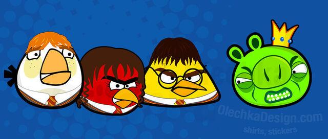 File:Potter birds by olechka01-d3l1dii.jpg