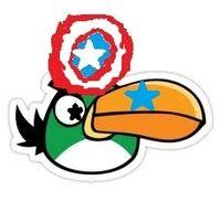 Boomerang Bird