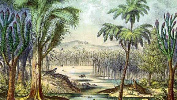 File:Carboniferous backgroud.jpg