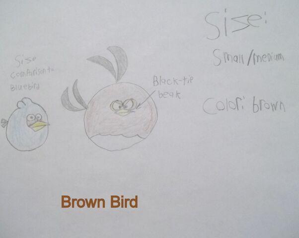 File:Brown bird data.jpg