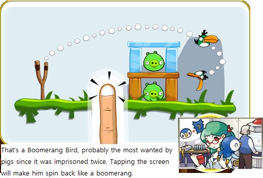 File:Boomerangbirdexplanation.png