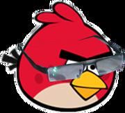 Red goggle bird