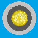 Badge R