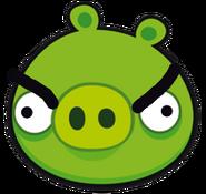 Angry pig