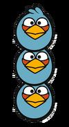 Blue birds 2