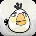 White-bird-angry-birds-24207861-128-128