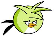Shruiken bird