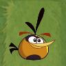 OrangeBirdABArtwork