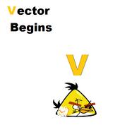 Vector begins