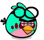 Sick Goggle Bird