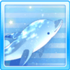 Star Dolphin White