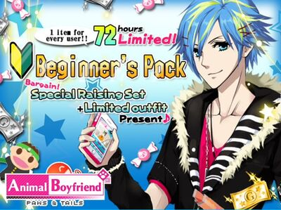 Beginner Pack