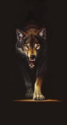 File:Snarling Wolf11.jpg