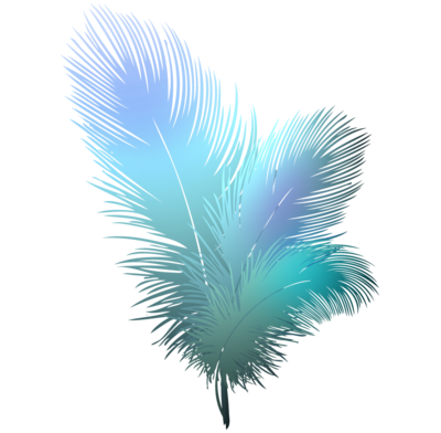 89e540fb45f27b1f4c327d867d3fd906 feathers-clipart-feathers-clipart-transparent-background 916-898