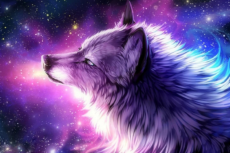 Dogsgalaxywolfpaintingscreativepredraw Paintlovelybeautifulanimalswolvesloveseasonsdigitalarthdpicturesg