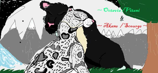 File:Octavia x Akane.png