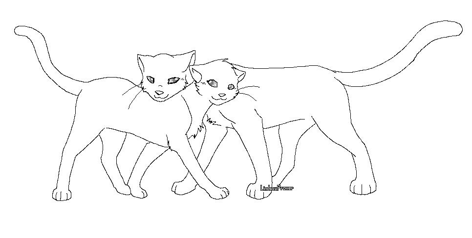 Coloring Animal Jam How To Draw An Arctic Wolf By Darkonator DrawingHub