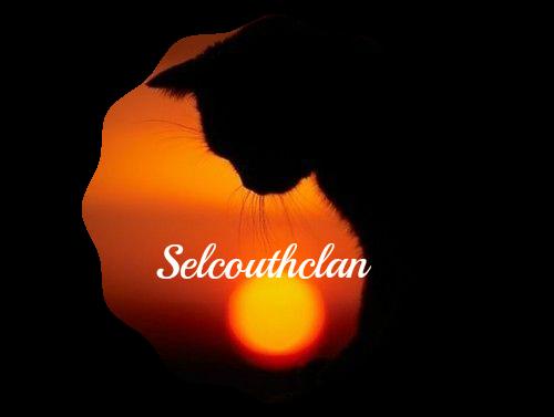 Scbanner