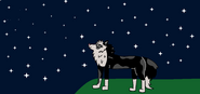 Cian, lookin at the stars