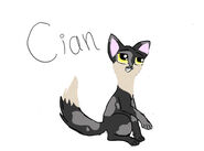 Cian (POSP)