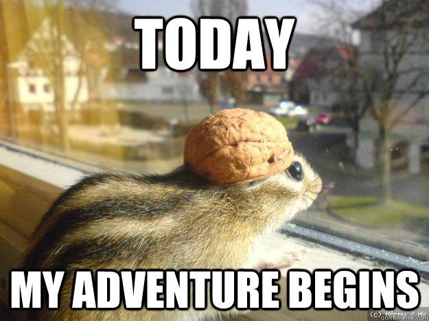File:Rodent meme.jpg