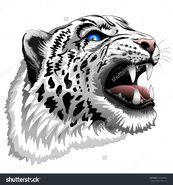 Stock-vector-snow-leopard-roar-196003802