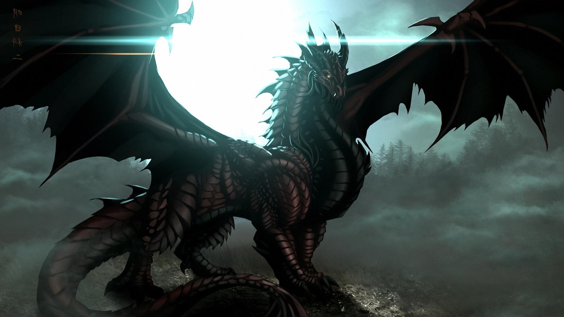 high resolution black dragon - photo #12