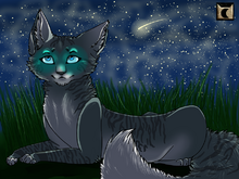 One of the starclan cats that sends signs