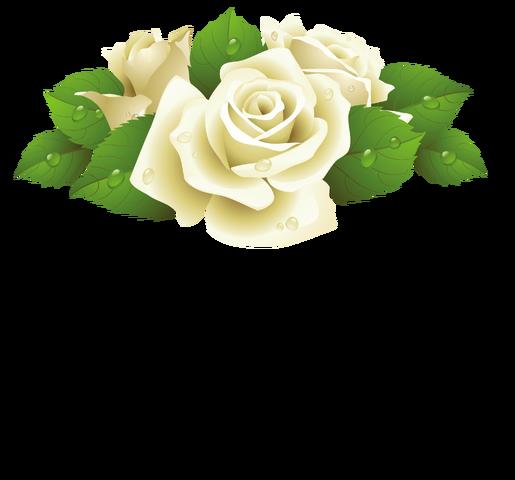 File:Sage flower.png