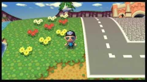 Animal Crossing City Folk - Tour of My Town
