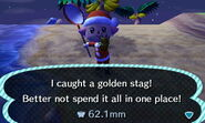 Golden stag caught