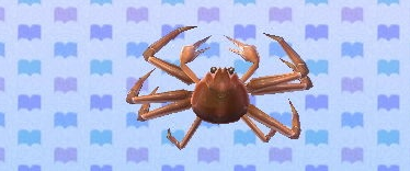 File:Snowcrabby.png