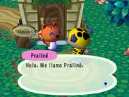 Conociendo a Praliné en ACPA