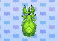 Walking leaf encyclopedia (New Leaf)