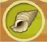 File:Conch.jpg