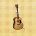Folk-guitar