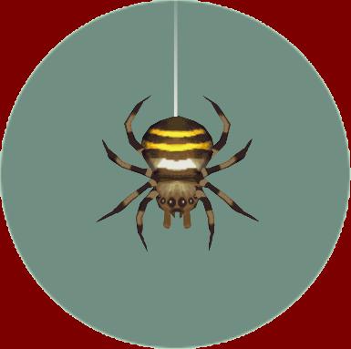 File:Spider (City Folk).png