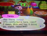 Tangy Animal Crossing GC