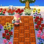 Wateringflowers