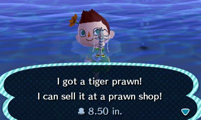File:HNI 0080 tiger prawn.jpg